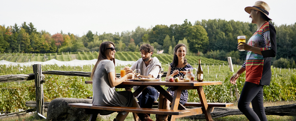 A trip on the Brome-Missisquoi Wine Route in the Eastern Townships