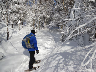 Saint-Donat snowshoeing trails