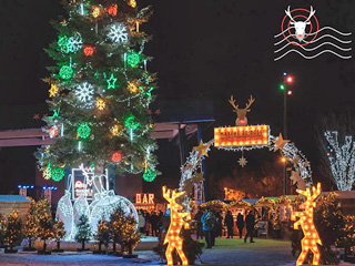 Association of Quebec Christmas Markets