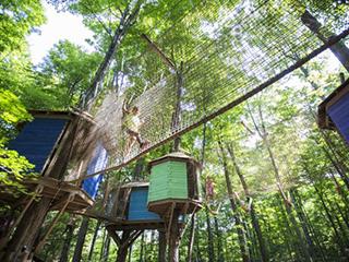 arbre en ciel village rawdon lanaudire - Arbre Ciel