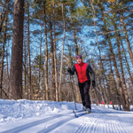 A Day of Cross-Country Skiing