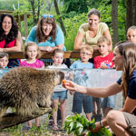 Enjoy Summer at the Ecomuseum Zoo!
