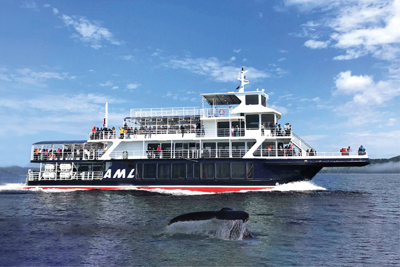 Croisières AML - Grand Fleuve whale cruise and guided cruise Passport