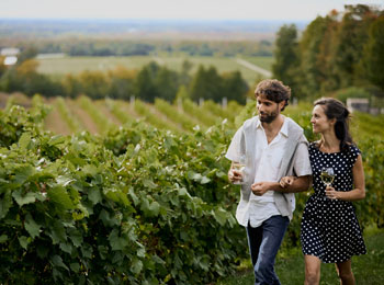 An unforgettable gourmet getaway on the Brome-Missisquoi Wine Route!