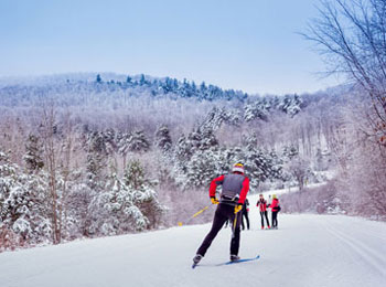 Cross-country skiing at Gatineau Park