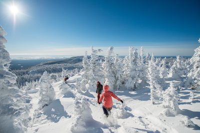 Discover the Best of Saguenay–Lac-Saint-Jean