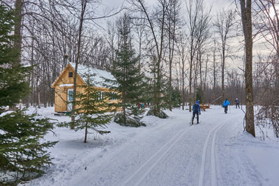 Make the most of winter on cross-country skiing trails