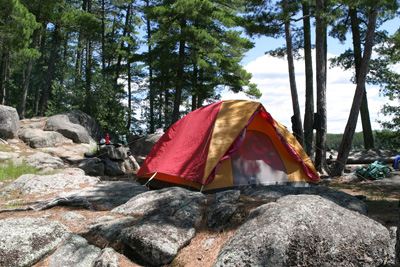 Get your tents ready: camping is back!