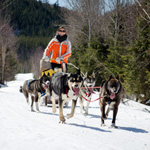 Spend Winter in the Outdoors with Aventure Écotourisme Québec
